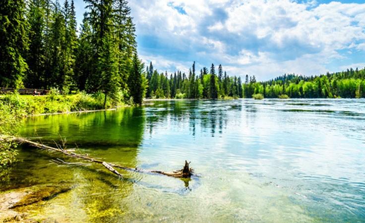 Meditation in der Natur